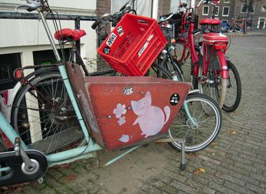basket on bicycle.jpg