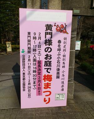 koishikawa 2.jpg