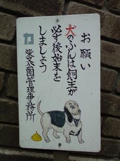 shibamata dog 2.jpg