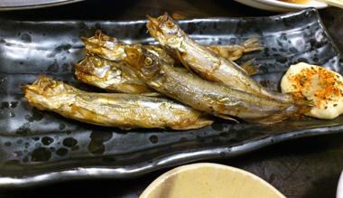 shishamo tsukiji.jpg