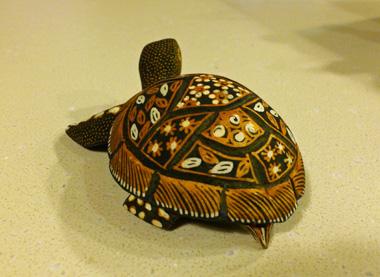 wooden turtle back.jpg